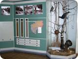 Выставка У истоков